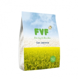 gao japonica fvf 2 kg